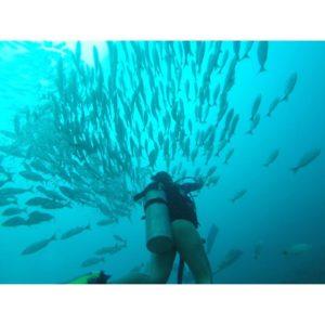 scuba-diving-costa-rica