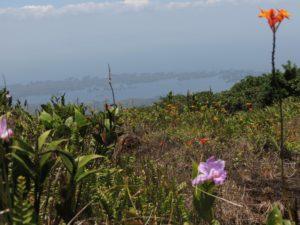 mombacho-volcano-nicaragua
