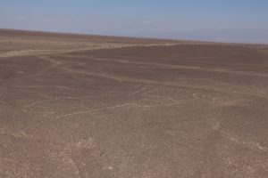 visit-peru-with-elemento-natural-nazca