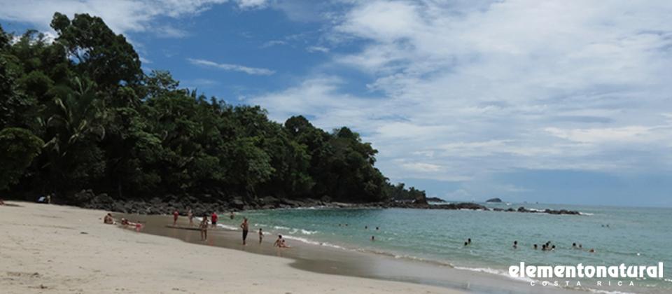 lear-spanis-in-costa-rica