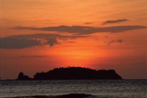Harpy Eagle, Punta Patino, visit Panama