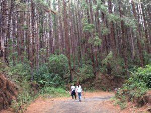 Visit Costa Rica, hike Prusia, Irazu Volcano National Park